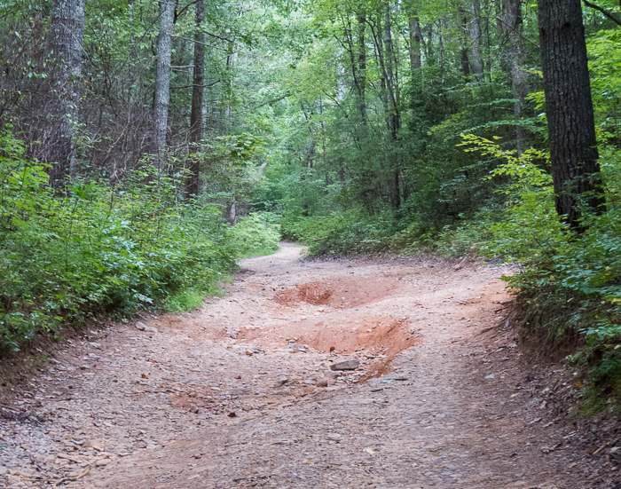 Day 61: Smooth ride on a rough road
