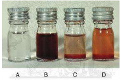 Palette of cerebral fluid