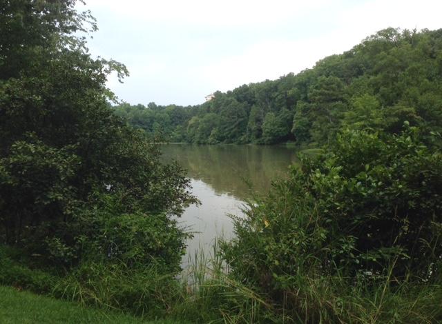 Candler Lake walk