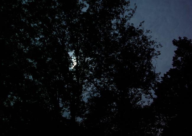 Walking in the dark